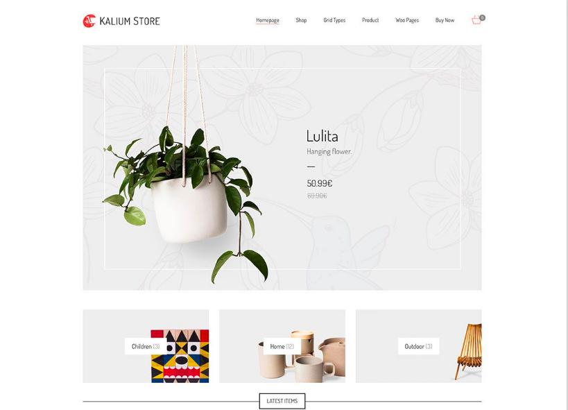 eCommerce website example